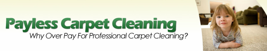 Payless Affordable Carpet Cleaning Santa Barbara